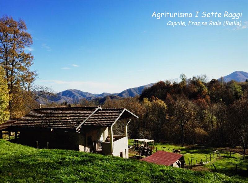 Fiere Agricole Giardinaggio Corso Online Orticoltura Florovivaismo