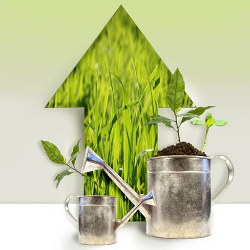 Fiorista Bornate Serravalle Sesia Composizioni di piante MIlano