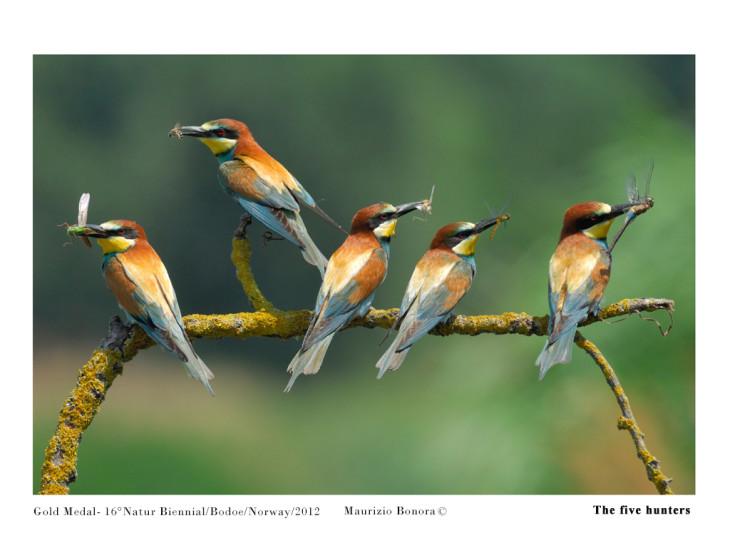 Maurizio_Bonora_The five hunters_01