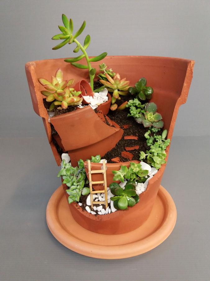 Mini terrario allestimento green e innovativo per la casa
