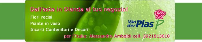 Fiorista Bornate Milano Composizioni fiori e piante